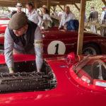 Maserati at the 20th Goodwood Revival