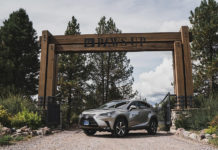 Lexus Resort at PAWS Experience