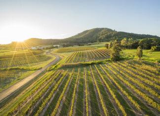 Shoalhaven Vineyards Destination New South Wales