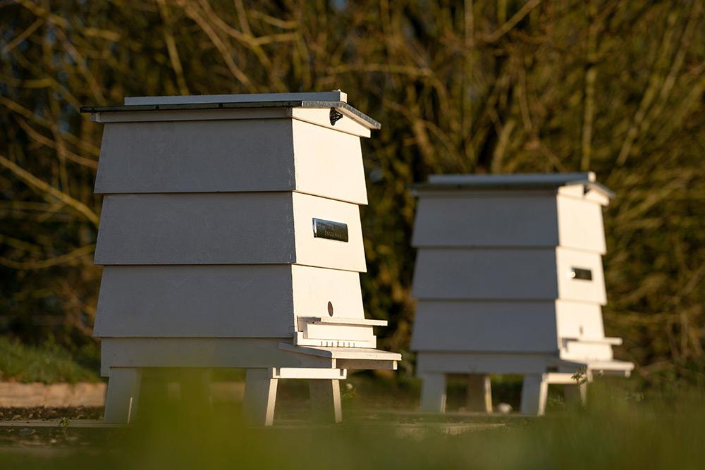 Rolls-Royce Apiary Beekeepers Goodwood
